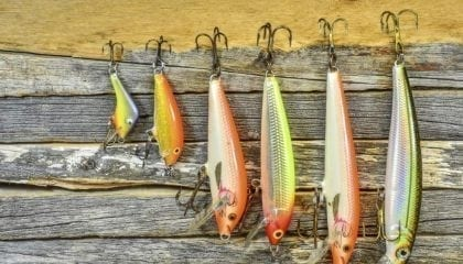 wpid508380-3cde7cb2-6f85-4a1a-bdc3-9e731668b51ffishing_lures_medium__comp_w1024.jpeg